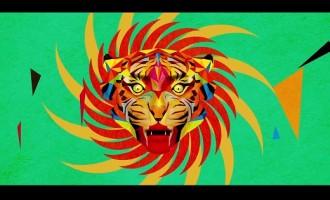 WATCH: Sufjan Stevens – 'Year of the Tiger'